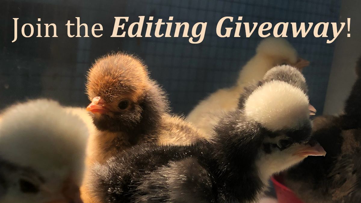 Editing giveaway chick pic